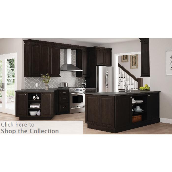 Designer Series, Kitchen Cabinets, Kitchen Design, Kitchen Remodel, Dark Kitchen Cabinets, Raised Panel Door